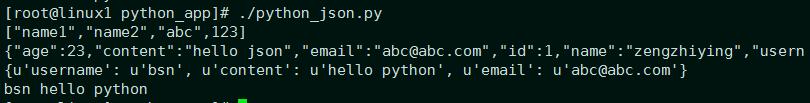 python转json运行结果